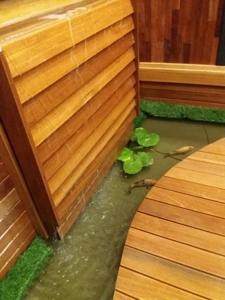 lantai kayu bogor