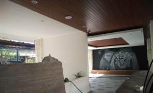plafond keruing